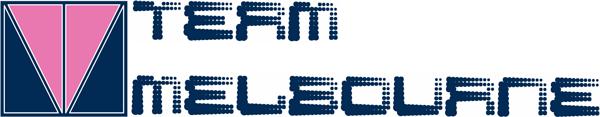 Team-Melbourne-logo2_600x117